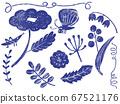 斯堪的納維亞的花和昆蟲 67521176