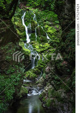 아름다운 계곡 무건리 이끼폭포.12 67524424