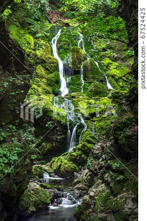 아름다운 계곡 무건리 이끼폭포.13 67524425