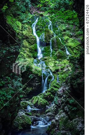 아름다운 계곡 무건리 이끼폭포.14 67524426