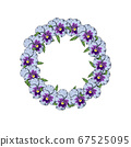 Hand drawn colorful pansy flowers circular wreath. 67525095