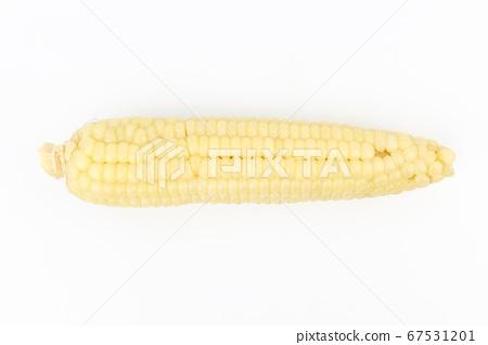 玉米 67531201