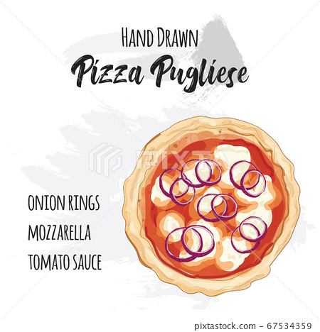 Hand drawn colorful pizza Pugliese with ingredients 67534359