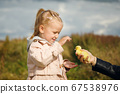 Little girl admires the little duckling held by mom's hand 67538976