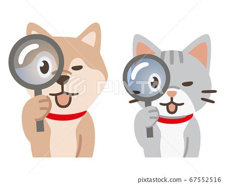 狗和貓通過放大鏡看 67552516