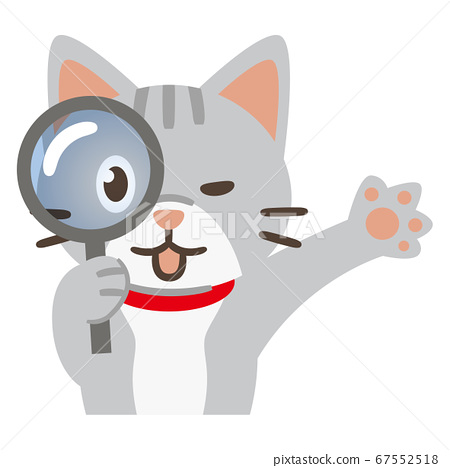 Cat looking through a magnifying glass 67552518