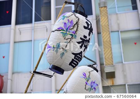 【카나가와】 요코스카 가마 퍼레이드의 등불 67560064
