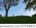 푸른 하늘과 언덕 피안 꽃 67568832