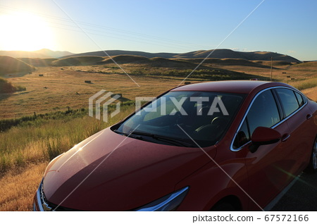 Red car running in the meadow 67572166