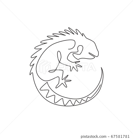 One continuous line drawing of beautiful iguana for company logo identity. 67581781