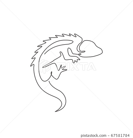 Single continuous line drawing of beautiful iguana for company logo identity or pet collector 67581784