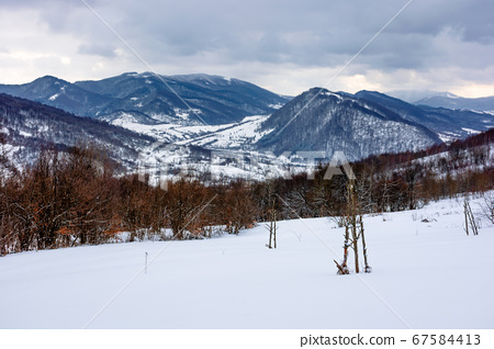 cloudy winter morning in mountains. tree on snow 67584413