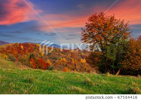 autumnal rural landscape at dusk. beautiful 67584416