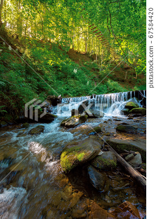 mountain river in the forest. fresh water stream 67584420