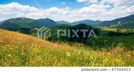 pasture on a sunny day in mountains. wonderful 67584423