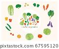 蔬菜 67595120