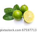Top view of green lemon lime citrus with leaves 67597713