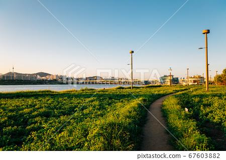 Banpo Hangang Park Seorae Island and cityscape with Han River in Seoul, Korea 67603882