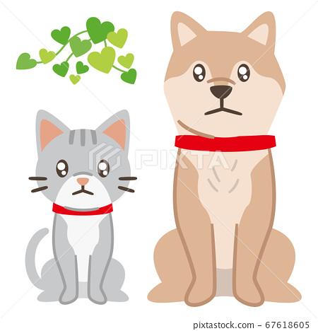 슬픈 눈으로 바라 개와 고양이 67618605