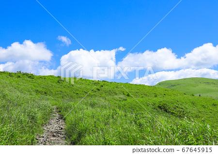 夏季Kirigamine遠足生態圖像 67645915