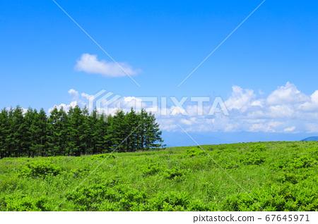 에코 이미지 푸른 하늘과 초원 기리가 미네 67645971