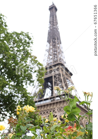 Eiffel Tower in the City of Flowers and Memories of Summer Paris 67651366