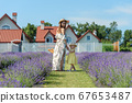 Family portrait in lavender field, mother and daughter together having fun 67653487