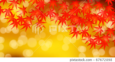 秋葉槭樹秋天背景 67672898