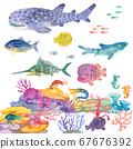 珊瑚海 67676392