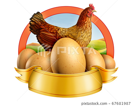 Eggs and hen 67681987