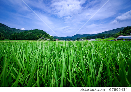 Satoyama風景在日本 67696454