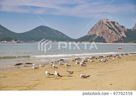 群山仙遊島路暑假海灘,大海,Saemangeum,仙遊島海灘,港口,島嶼 67702556