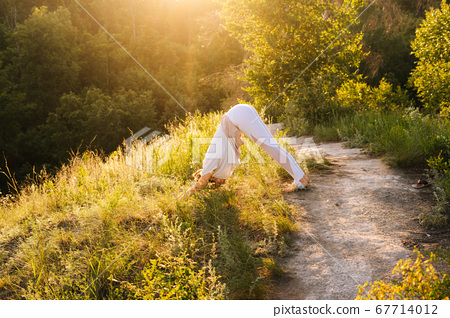 Attractive young woman practicing relaxing in yoga Downward Facing dog or Adho Mukha Svanasana pose 67714012