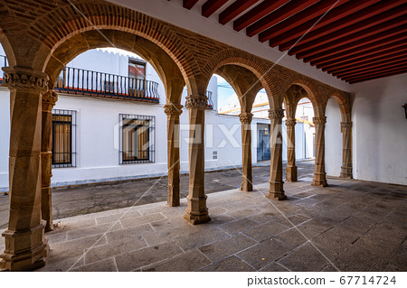 Palace of the Zapata in Llerena, Extremadura, 67714724