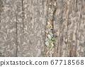 枕木與碎石 67718568