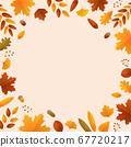 秋天的葉子和橡子背景素材 67720217