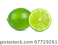 lime on white background 67729261