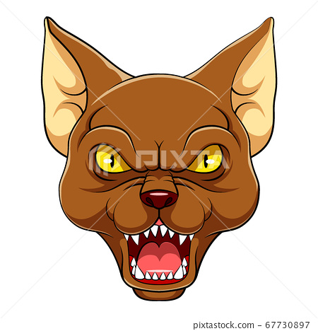 Angry oriental cat Mascot of illustration 67730897