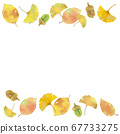 Autumn motif Top and bottom sprinkle ginkgo 67733275