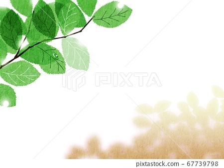 햇살이 빛나는 벚꽃 잎과 나무 그늘 [여름 브라운] _1 67739798