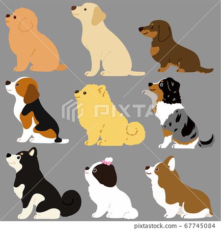Illustration of cute dog sitting sideways Set B without main line 67745084