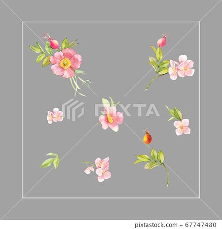 화려한 꽃 소재 조합 및 디자인 요소 67747480