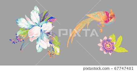 화려한 꽃 소재 조합 및 디자인 요소 67747481
