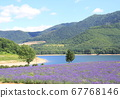 Lake and mountains and lavender 67768146