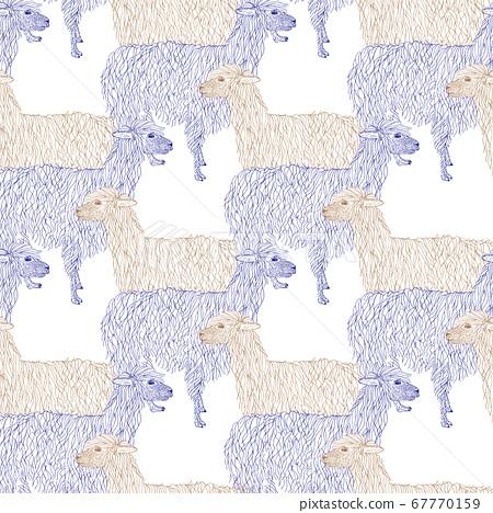 Lama, alpaca hand drawn. Object isolated on white. 67770159