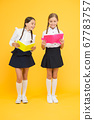 project work together. literature lesson. small 67783757
