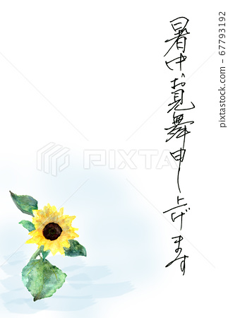 Summer greeting card postcard sunflower illustration painted in watercolor 67793192