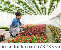 Plantation, gardener, farm and technology. Smiling girl with smartwatch, typing on tablet 67823556