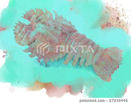 Illustration of colorful shrimp 67838448