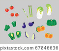 蔬菜 67846636